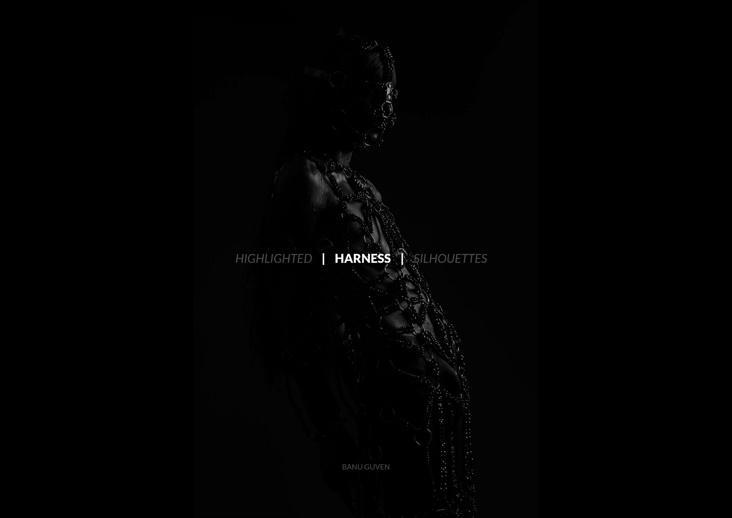 Harness: Highlighted Silhouettes - Jewelry Masters Thesis
